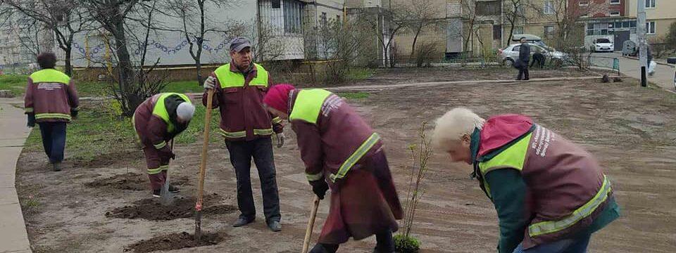 Весняне висаджування дерев