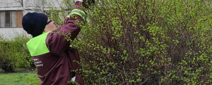 Догляд за зеленими насадженнями