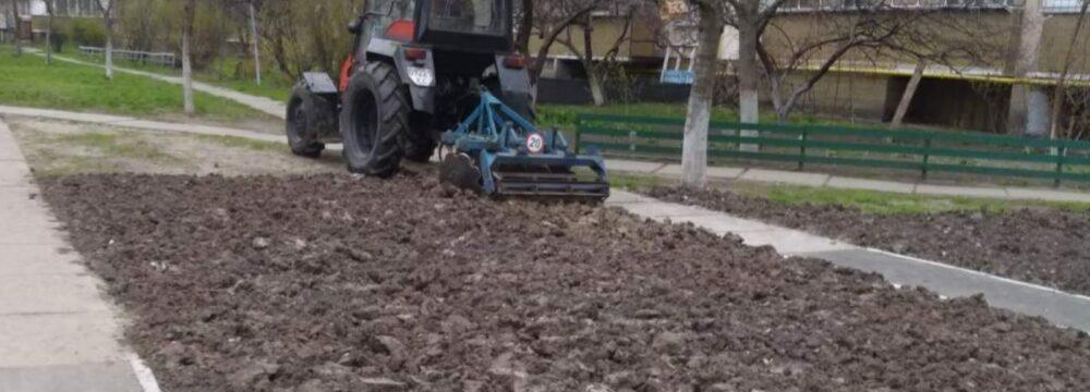 Відновлення газонів